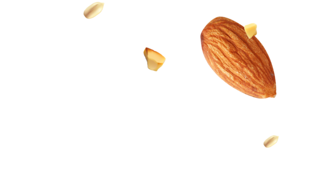 http://mavroidis.gr/wp-content/uploads/2017/07/almond_seed-640x348.png